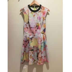 Ted Baker Abstract Floral Dress